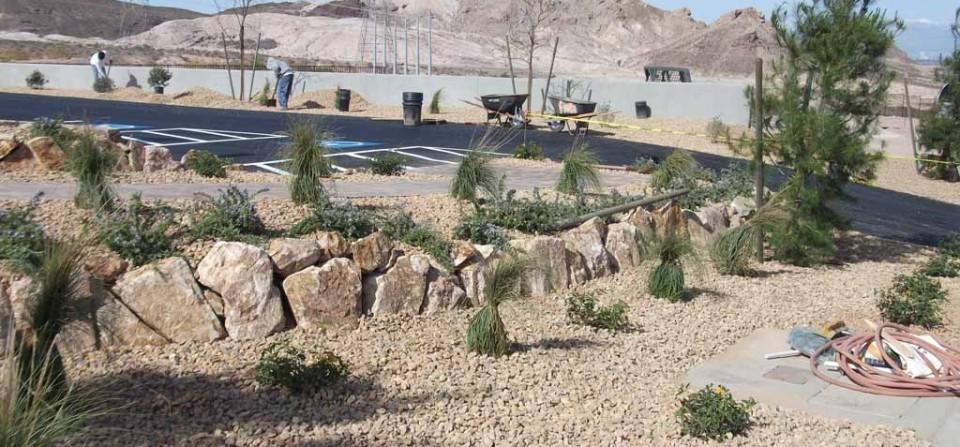 Landscape Conversions